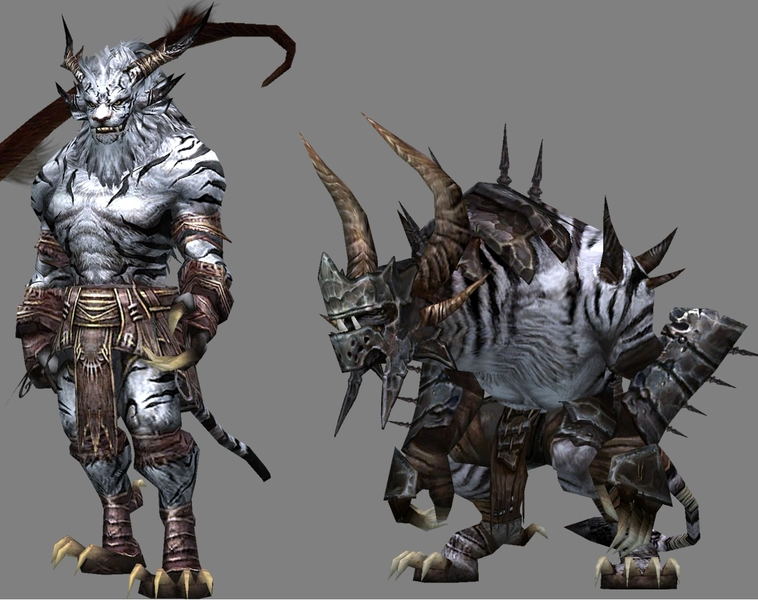 Choosing A Race In Guild Wars 2 | Hunter's Insight - A Guild
